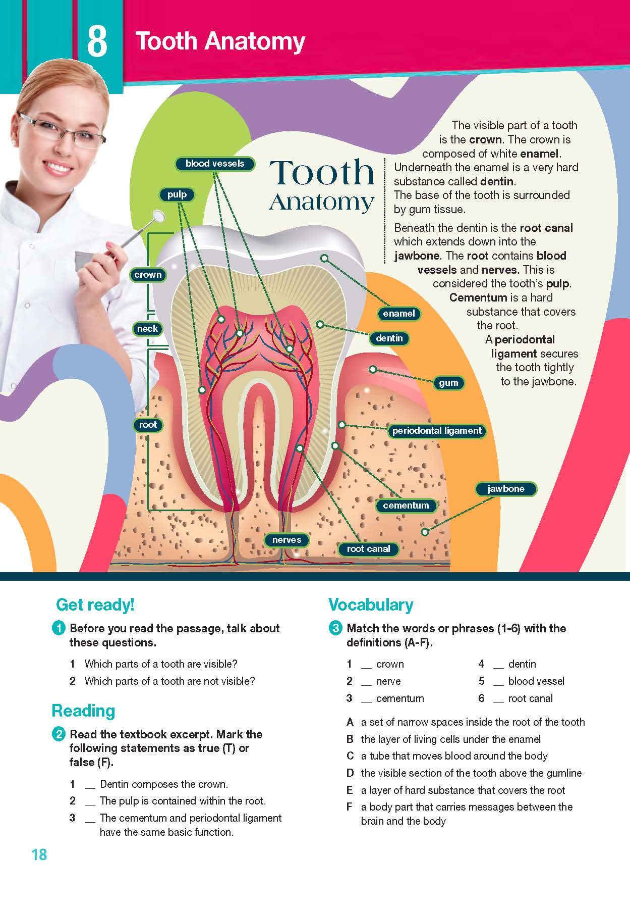 ESP English for Specific Purposes - Career Paths: Dental Hygienist- Sample Page 3